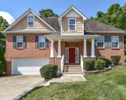 2621 Mountain Dale Ct, Antioch image