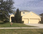4516 Powderhorn Place Drive, Clermont image