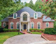 102 Golden Wings Court, Greer image