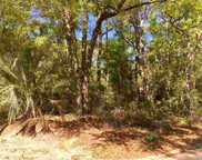 Lot 12 Hopeland Ct., Pawleys Island image