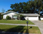 207 Meadowcross Drive, Safety Harbor image