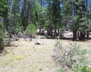 S Meadow, North Fork image