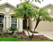 6707 Guilford Glen Place, Apollo Beach image