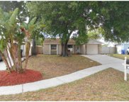 12704 Cheche Place, Tampa image