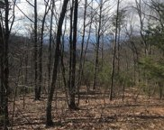00 Mountain Lookout  Drive, Bostic image
