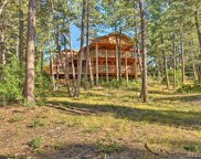 203 Staghorn Way, Franktown image