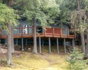 20 & 30 Bartoo Island, Priest Lake image