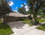 2316 Sweetwater Cc Place Drive, Apopka image