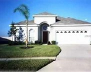 8194 Fan Palm Way, Kissimmee image