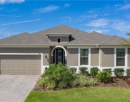 972 Sadie Ridge Road, Minneola image