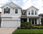 19221 Verdant Pasture Way, Tampa image