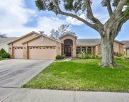 2719 Brianholly Drive, Valrico image