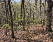 LT 66 Forestry Rd 100, Blairsville image