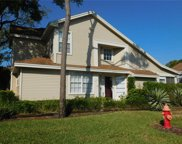 2144 Clover Hill Road, Palm Harbor image