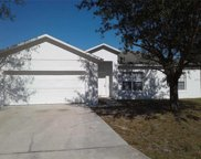 135 Briarcliff Drive, Kissimmee image