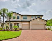 13217 Sunset Shore Circle, Riverview image