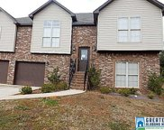 5167 Meadow Lake Trl, Bessemer image
