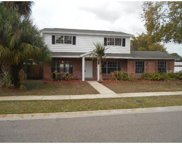 8401 Lopez Drive, Tampa image