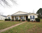 9719  Kennerly Cove Court, Charlotte image