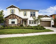 13217 Fawn Lily Drive, Riverview image