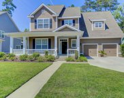 217 Silver Cypress Circle, Summerville image
