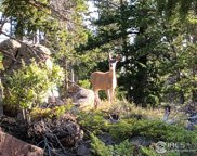 518 Crow Rd, Red Feather Lakes image