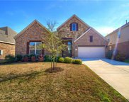 493 Clear Springs Holw, Buda image