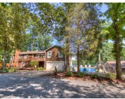 206  Blue Heron Way, Belmont image