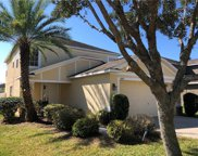 10631 Shady Preserve Drive, Riverview image