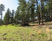 TBD Caledonia Trail, Custer image