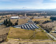 16700 State Route 507  SE, Yelm image