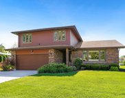 20420 South Cobble Stone Court, Frankfort image