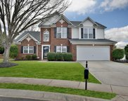 6306 Hawks Eye  Court, Fort Mill image
