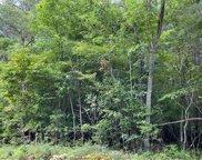 Wilkie Road, Blairsville image