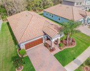 11856 Frost Aster Drive, Riverview image
