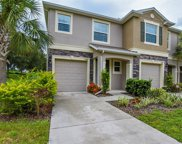 10419 Butterfly Wing Court, Riverview image