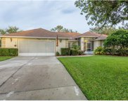 10824 Crescent Ridge Loop, Clermont image