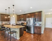 3333 CHESTNUT RIDGE WAY, Orange Park image
