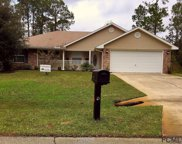 4 Reindeer Lane, Palm Coast image