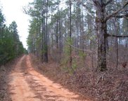 111 County Road 93, Abbeville image