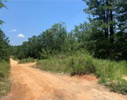 8650 Countryview, Wilmer image