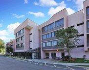 800 Willis  Avenue Unit #208, Albertson image