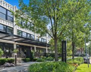 1070 West 15Th Street Unit 153, Chicago image