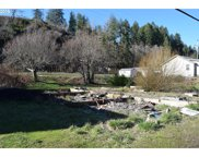 87850 RIVER VIEW  AVE, Mapleton image