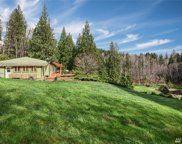 6502 284th Ave SE, Issaquah image