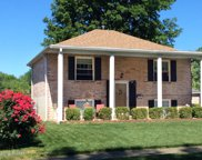 10808 Golden Dr, Louisville image