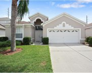 8204 Fan Palm Way, Kissimmee image