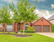 3213 Birch Avenue, Grapevine image