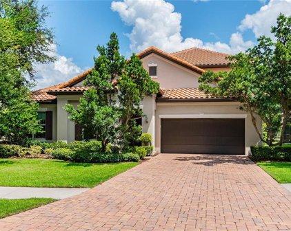 1107 Isobel Reserve Lane, Tampa