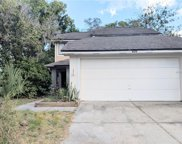 809 Reedy Cove, Casselberry image